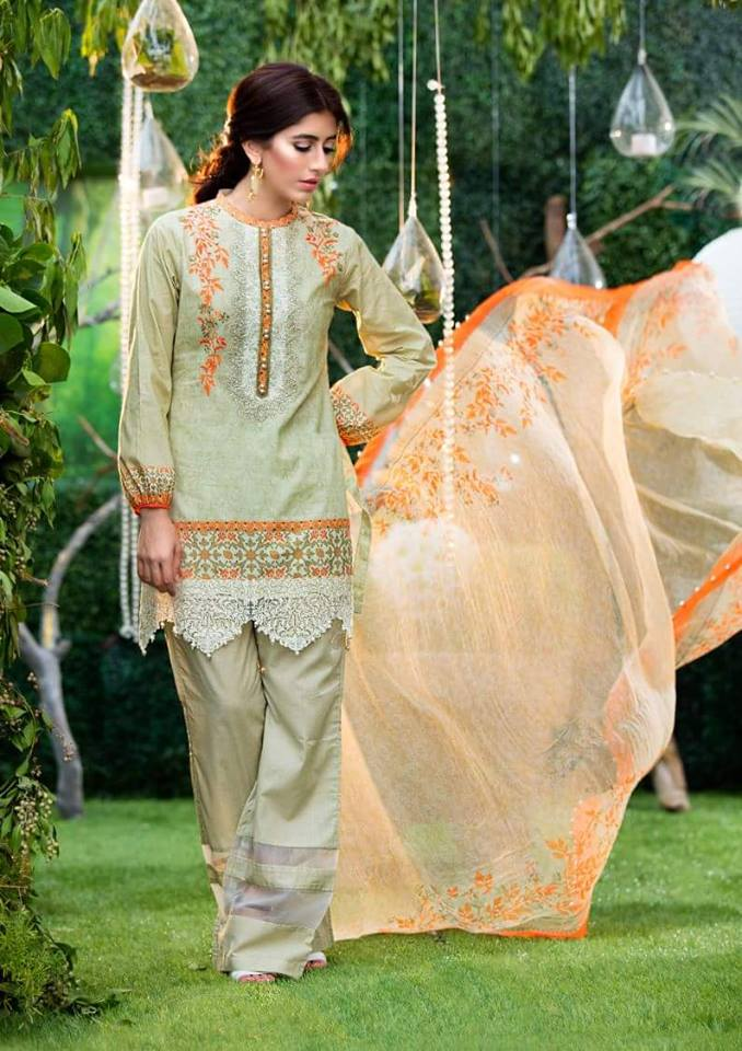 Chiffon Embroidery Collection by Alkaram-10