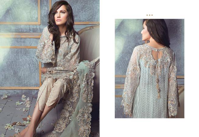 Rungrez Chiffon & Silk Collection 11